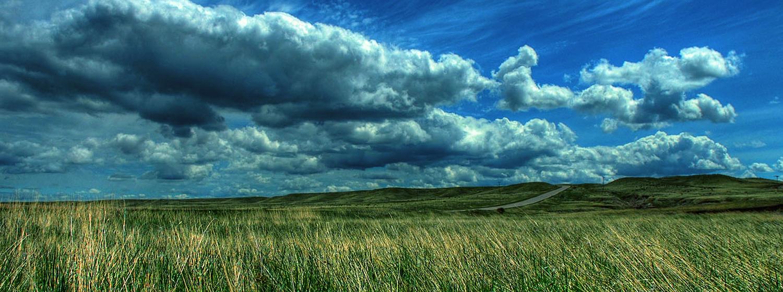 landscape-01-1500x5601